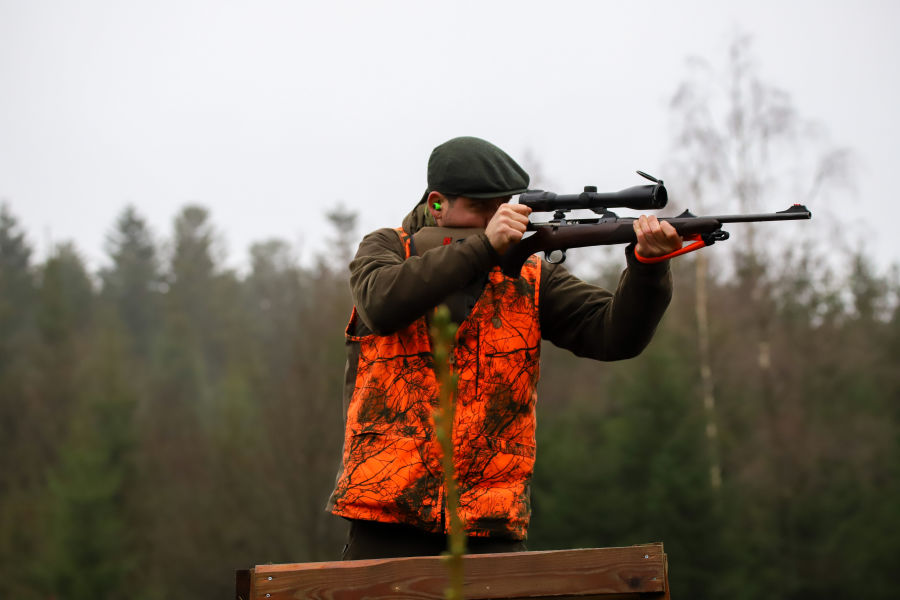 Join  us on a driven hunt in Belgium H/ - Dimitri Hullebroek at driven hunt shooting