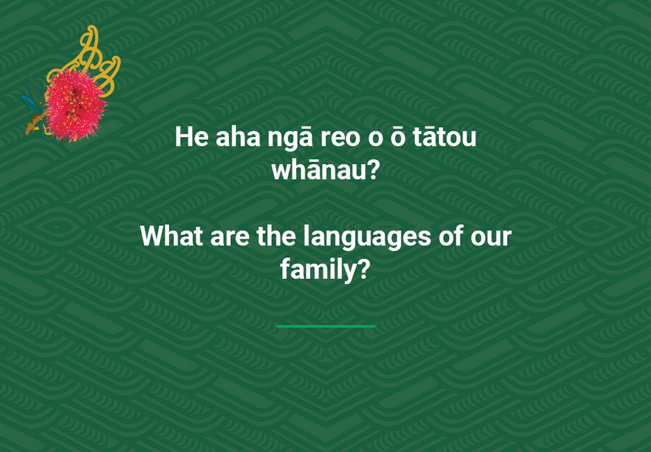 What are the languages of our family?  [Our languages](/files/schools/hm47-our-languages-english.mp3)