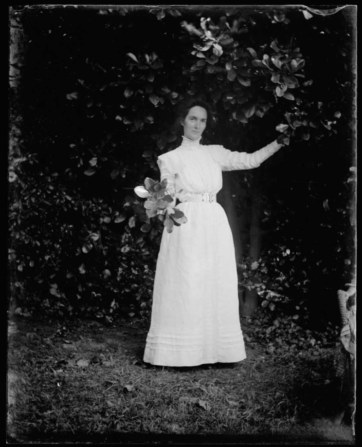 A woman in a white dress stands outside under a tree holding a bouquet of leaves.