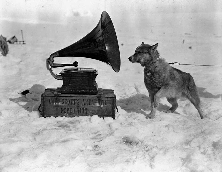 Dog and gramaphone on snow. Dog is straining towards the gramaphone.