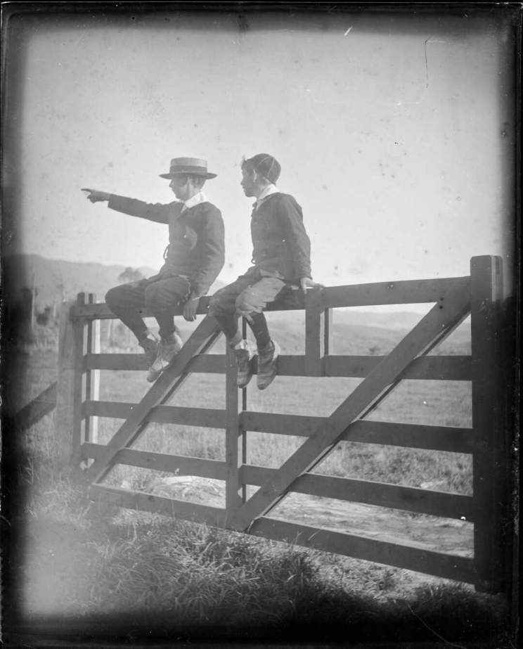 Two boys sitting atop a gate, one of them is pointing to something off camera while the other looks in that direction.