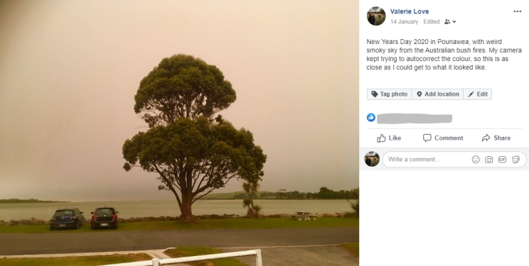 An image on Facebook showing a tree under a hazy sky.