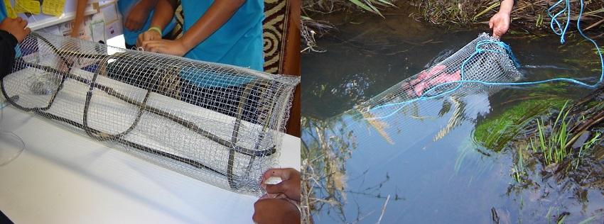 Ākonga at Te Wharekura o Manurewa making a hinaki and catching tuna.