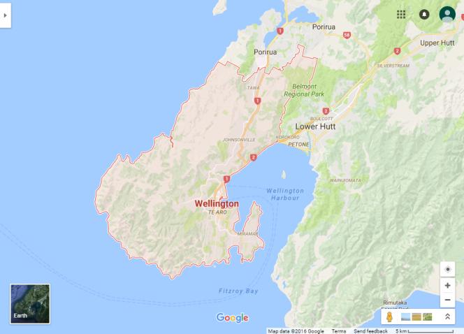 Google maps view of the Wellington region.