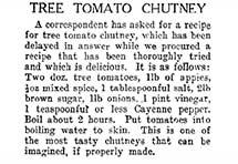 Tree tomato chutney recipe.