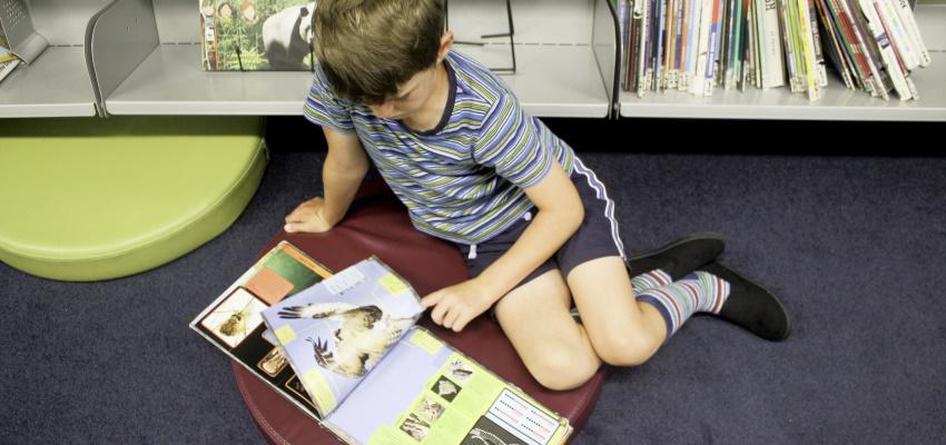 Boy reading.