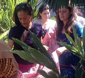 Women carrying bolts of masi through a bush.