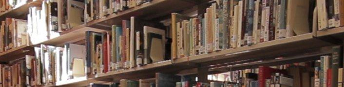 Sunlight on a bookshelf