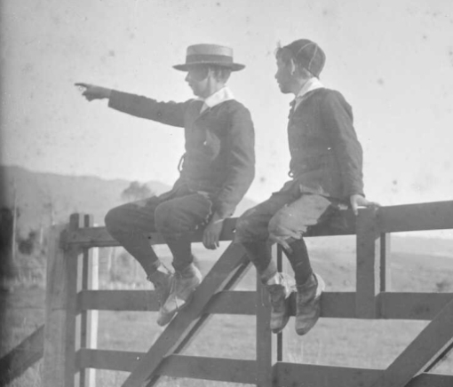 Two boys sitting atop a gate, one pointing at something off camera.