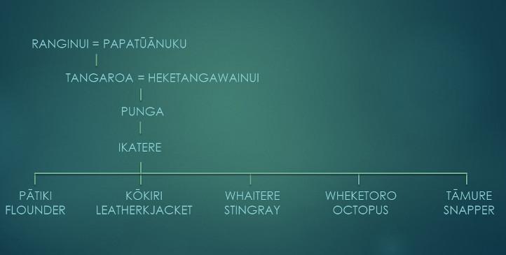 Fish genealogy chart