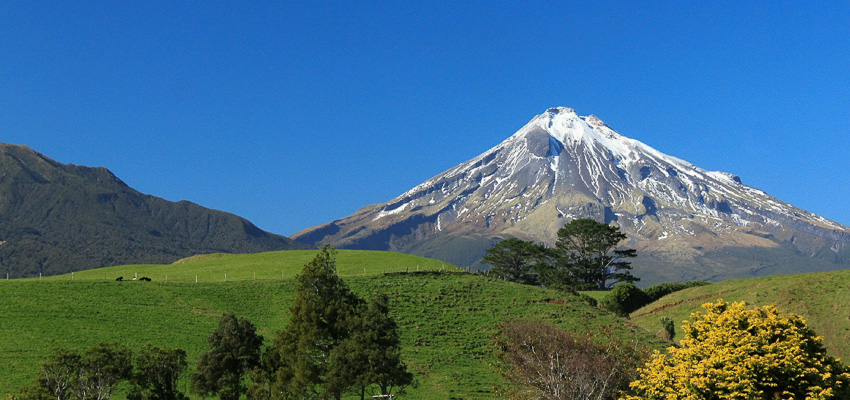 Mt Taranaki with pasture in foreground
