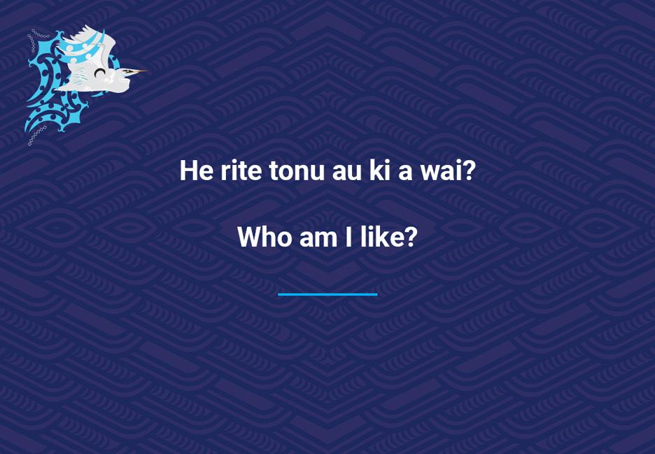 Who am I like?  [Who am I like](/files/schools/hm13-who-am-i-like-english.mp3)