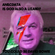 Anecdata album cover.
