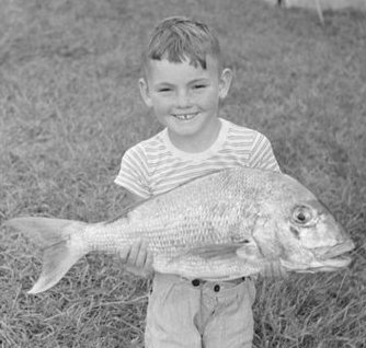A young boy holding a large fish.