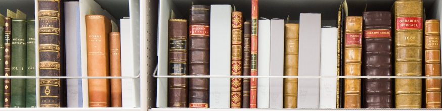 Leather-bound books on a bookshelf.