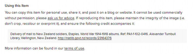 Screenshot of a record page, showing the terms of use and how to cite the item
