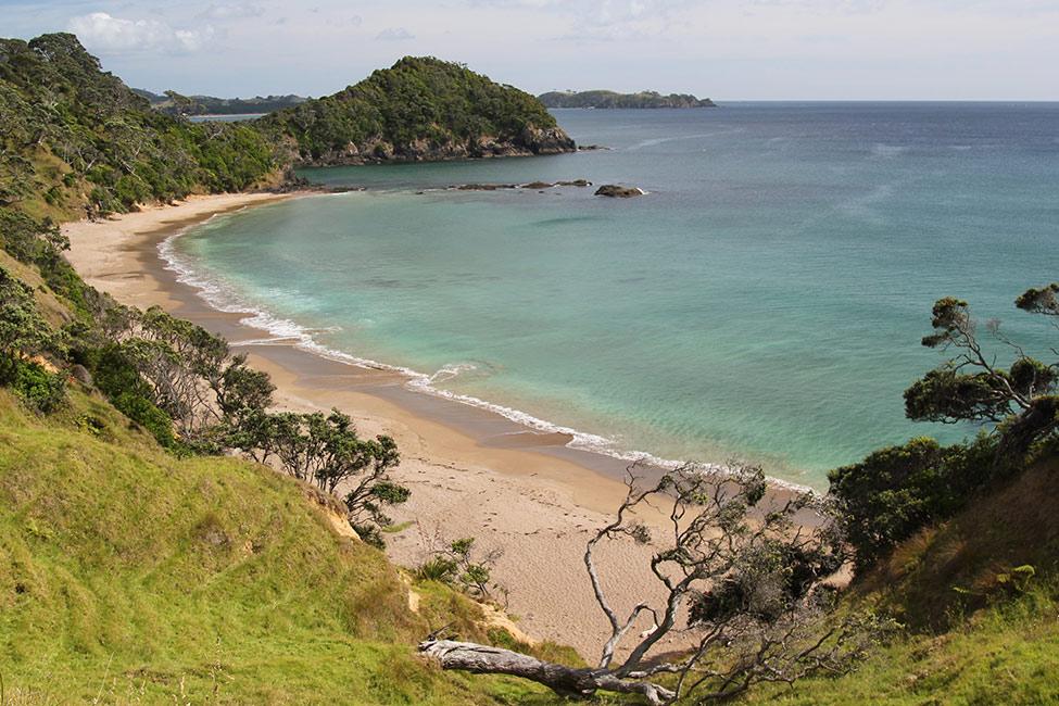 Nowhere in Aotearoa NewZealand is more than 120 kilometres from the sea. This photograph is of a deserted, tree-lined beach.  [Aotearoa coast](/files/schools/hm56-aotearoa-coast-english.mp3)