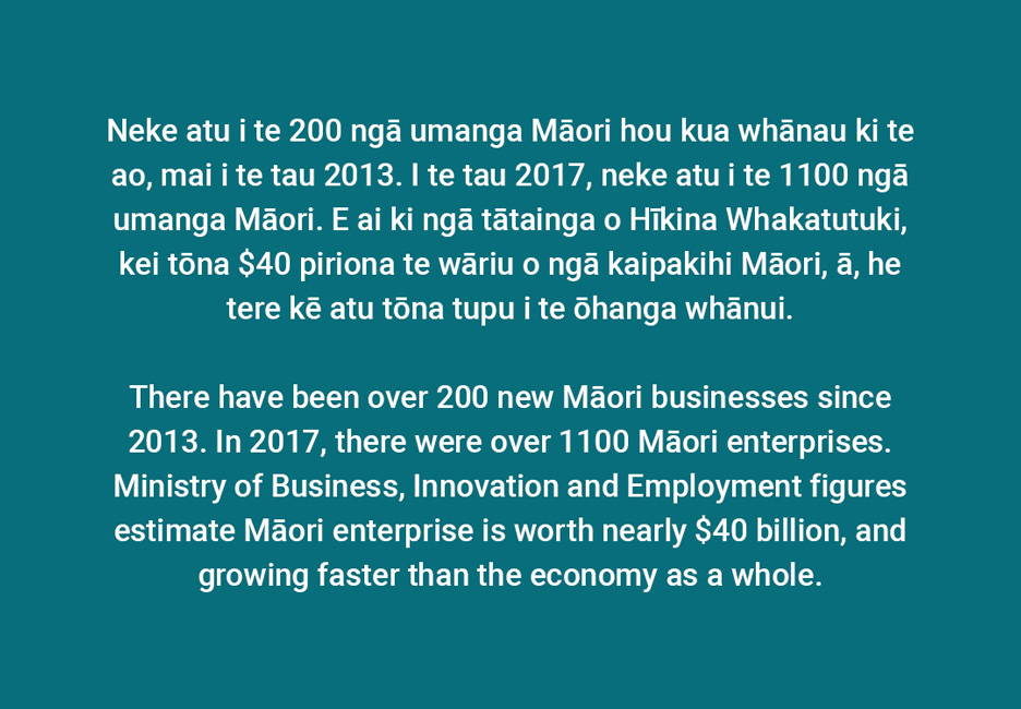 There have been over 200 new Māori businesses since 2013. In 2017, there were over 1100 Māori enterprises. Ministry of Business, Innovation and Employment figures estimate Māori enterprise is worth nearly $40 billion, and growing faster than the economy as a whole.  [Modern Māori enterprise](/files/schools/hm72-modern-maori-enterprise-english.mp3)