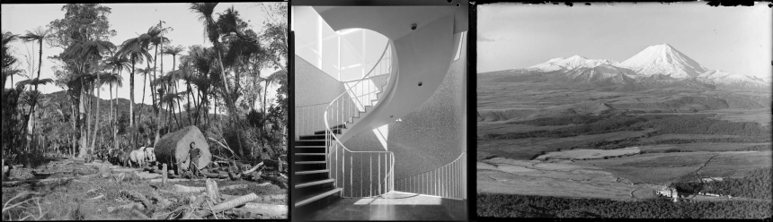 Triptych of photos relating to natural and urban environments.