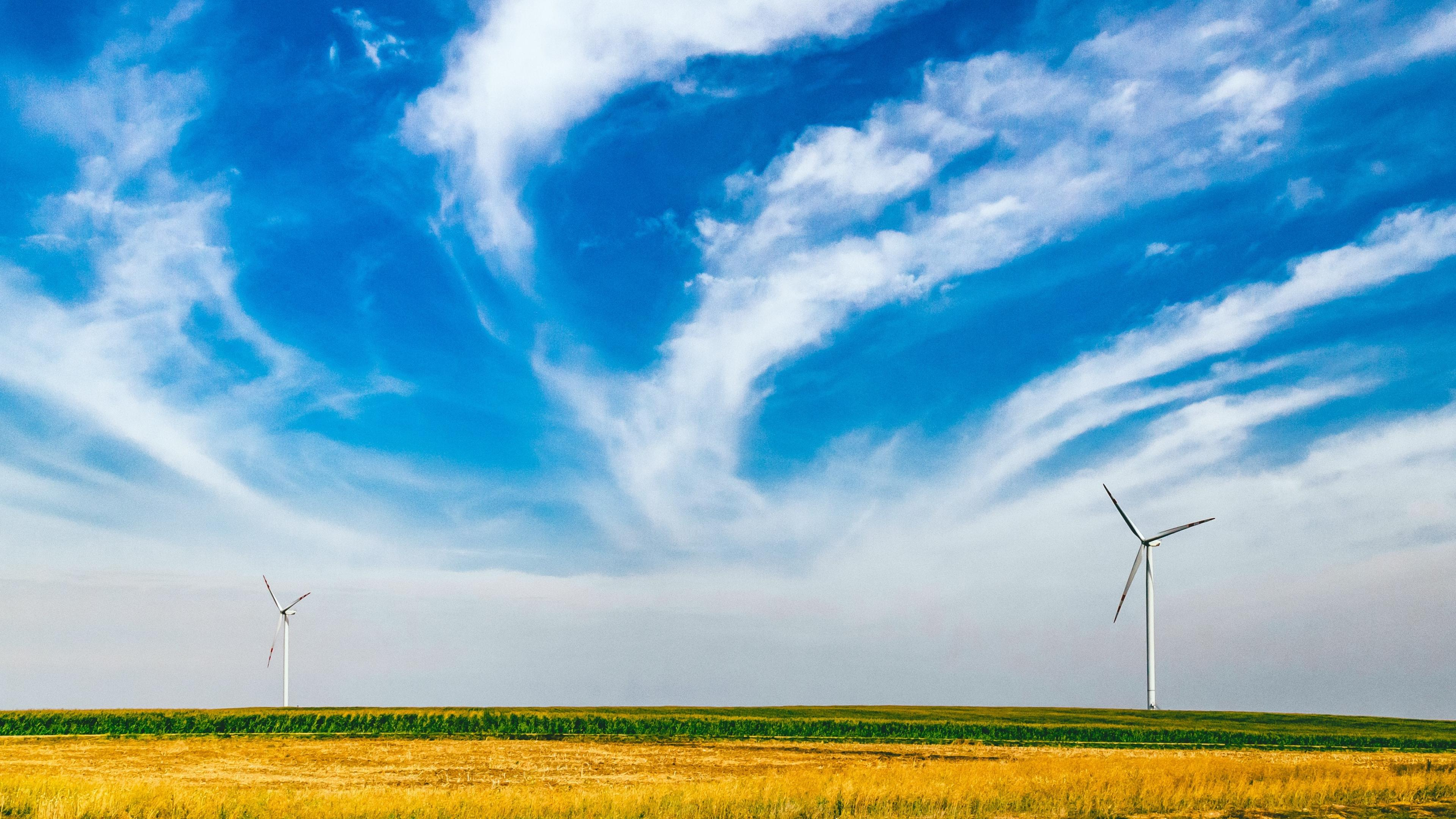 Wine turbines in a field against a cloudy blue sky