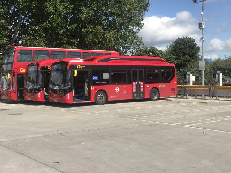 Northumberland Park buses
