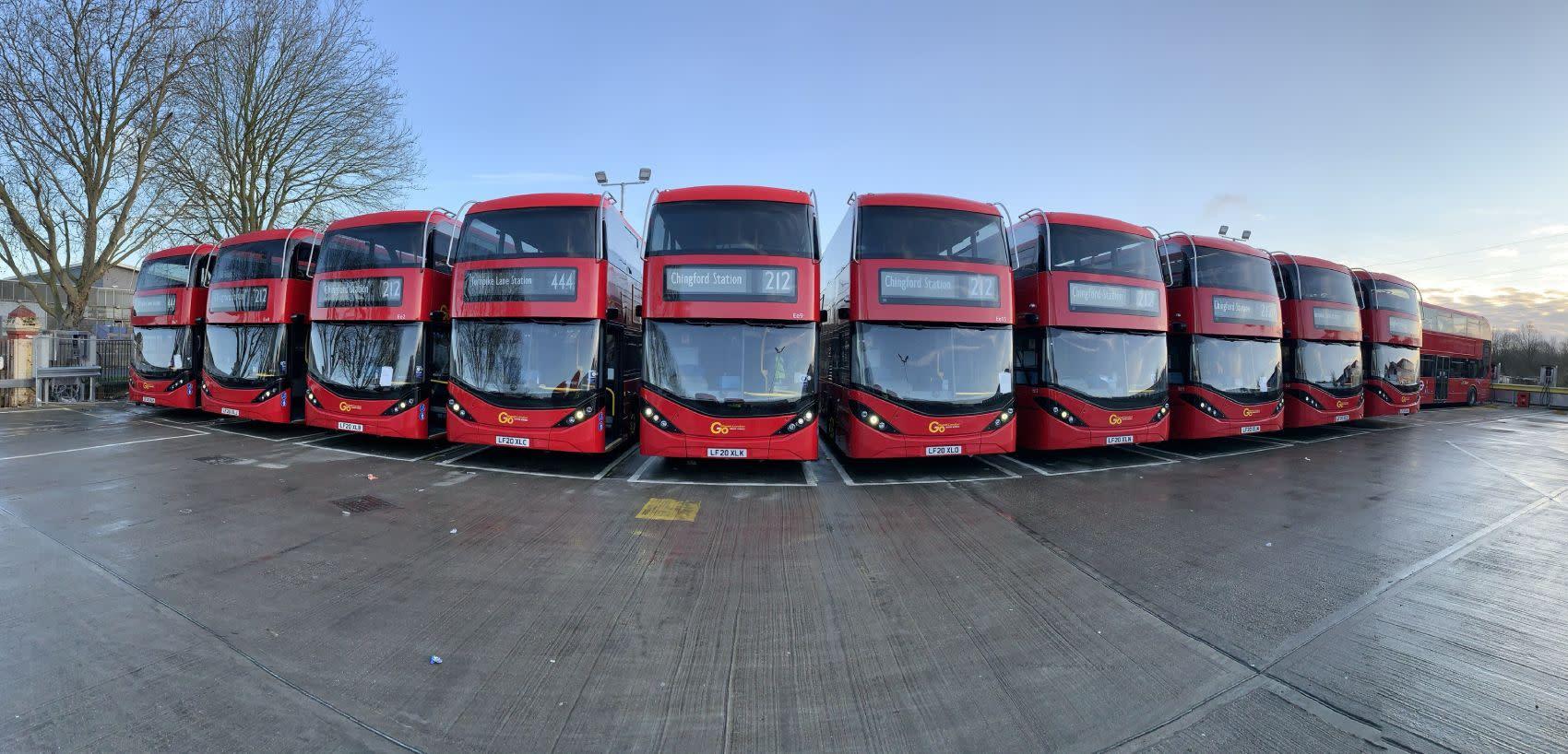 NP Buses.jpg