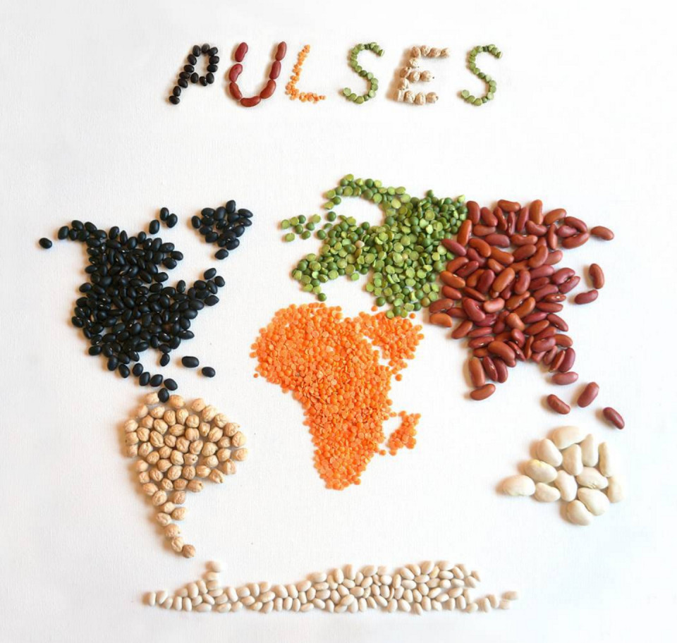 Get The Pulse On Pulses, The Hottest New Food Trend   Tastemade