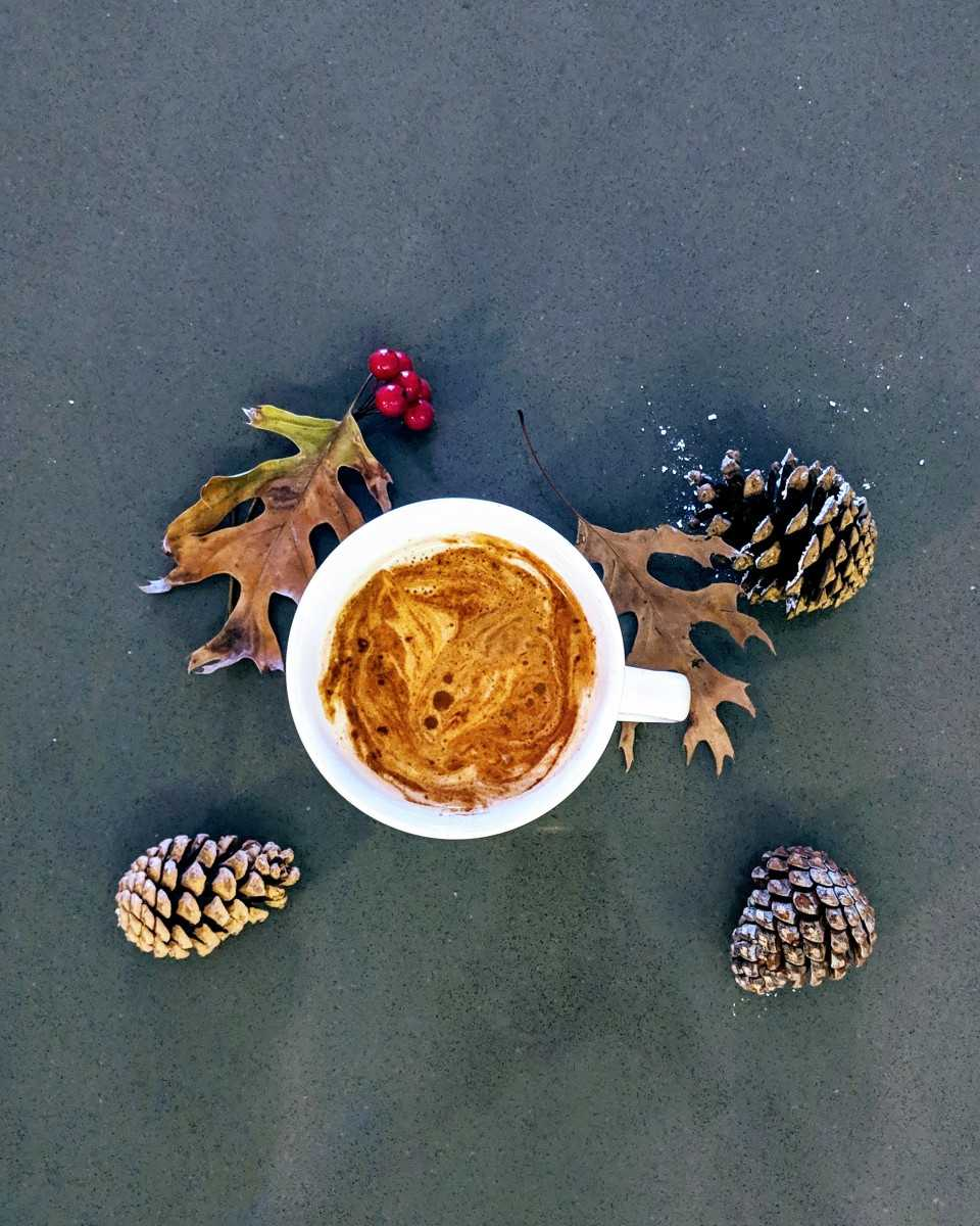 Overhead shot of chai tea latte mug surrounded by pinechones, fall leaves, and red berries