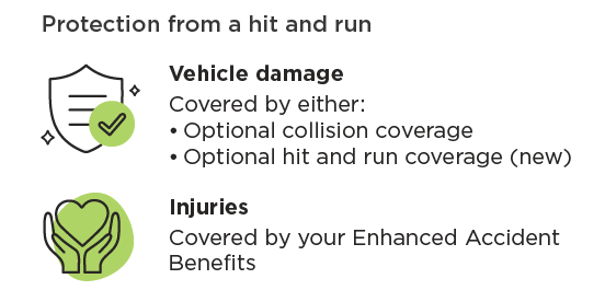 Summary of protection in a hit and run