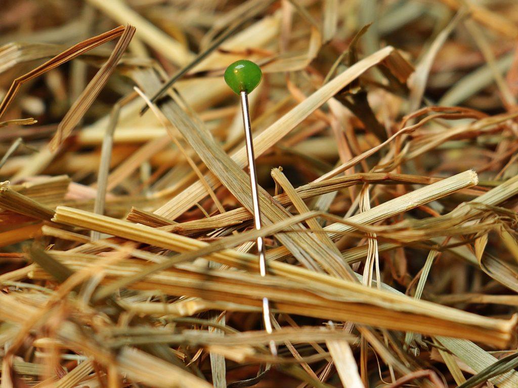 needle in a haystack product data error