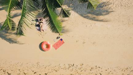 Above shot of beach, palm tree, woman, and doughnut bool toy.