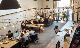 a coworking space with many freelancers sitting in a big open area.