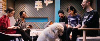 White dog and people sitting on a sofa and easy chairs in an N26 office lounge.