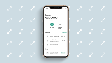 EasyFlex Savings Interface.