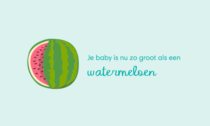 baby size of watermelon week 39
