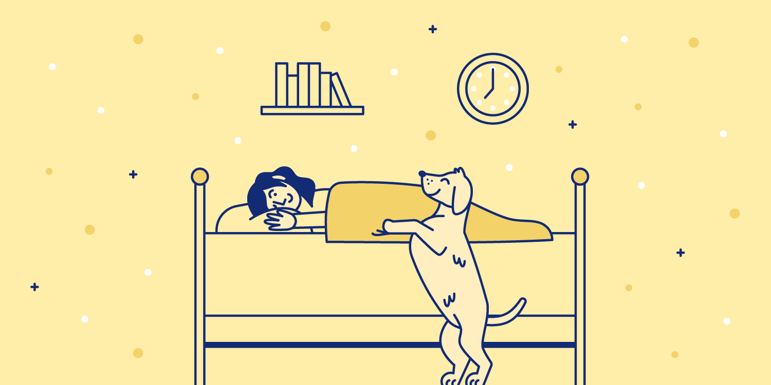 Dog politely asks to get on the bed with woman. Illustration.