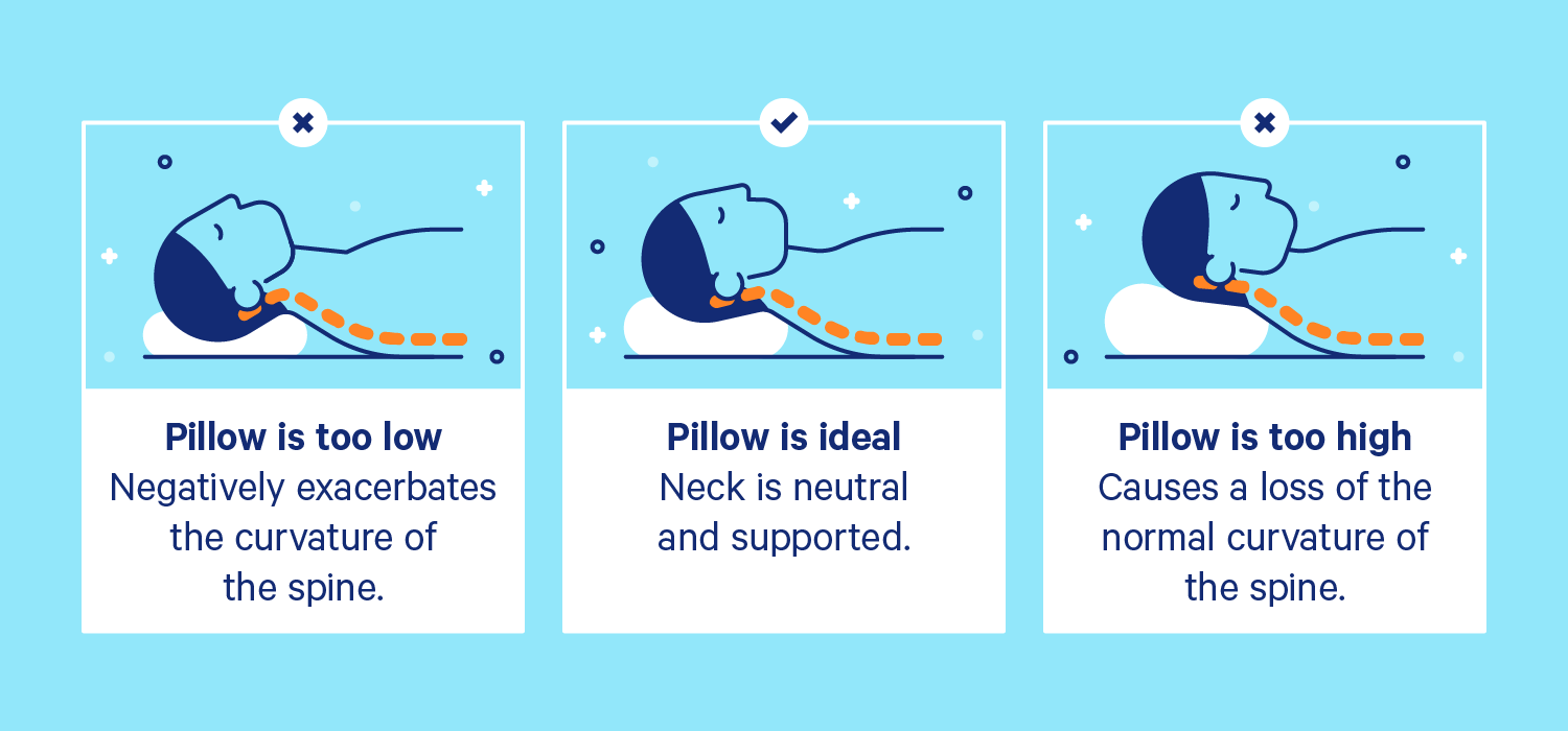 3 different images: aperso sleeping on a pillow that is too low, too high, and the correct height.