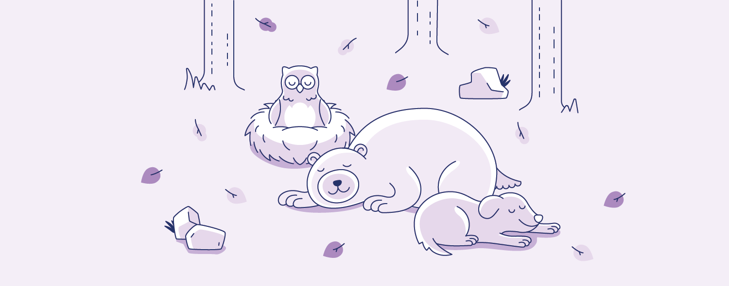 02 Dog, owl, bear