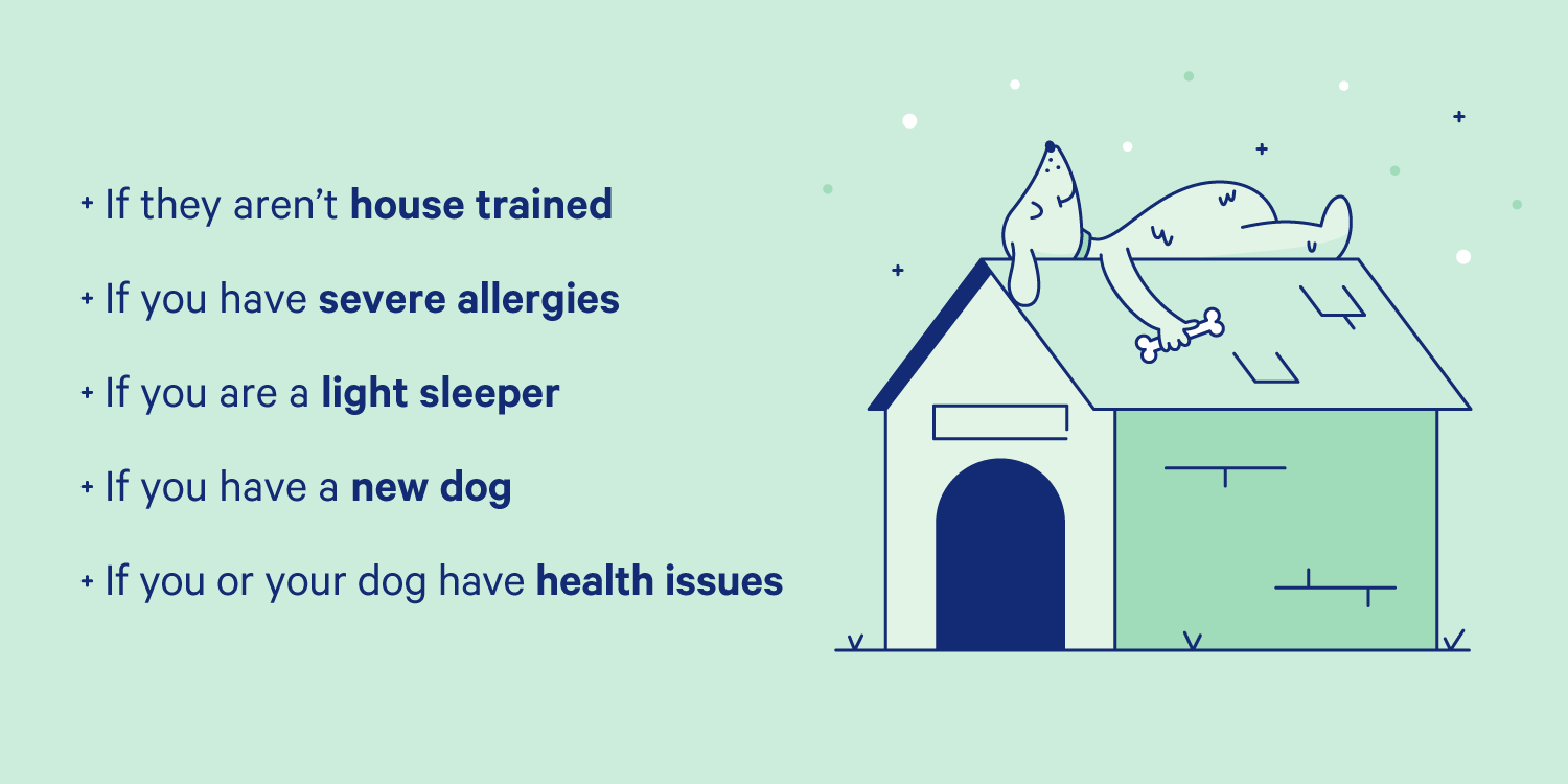 Dog sleeping on top of a dog house and situations where co-sleeping your dog doesn't make sense. Illustration