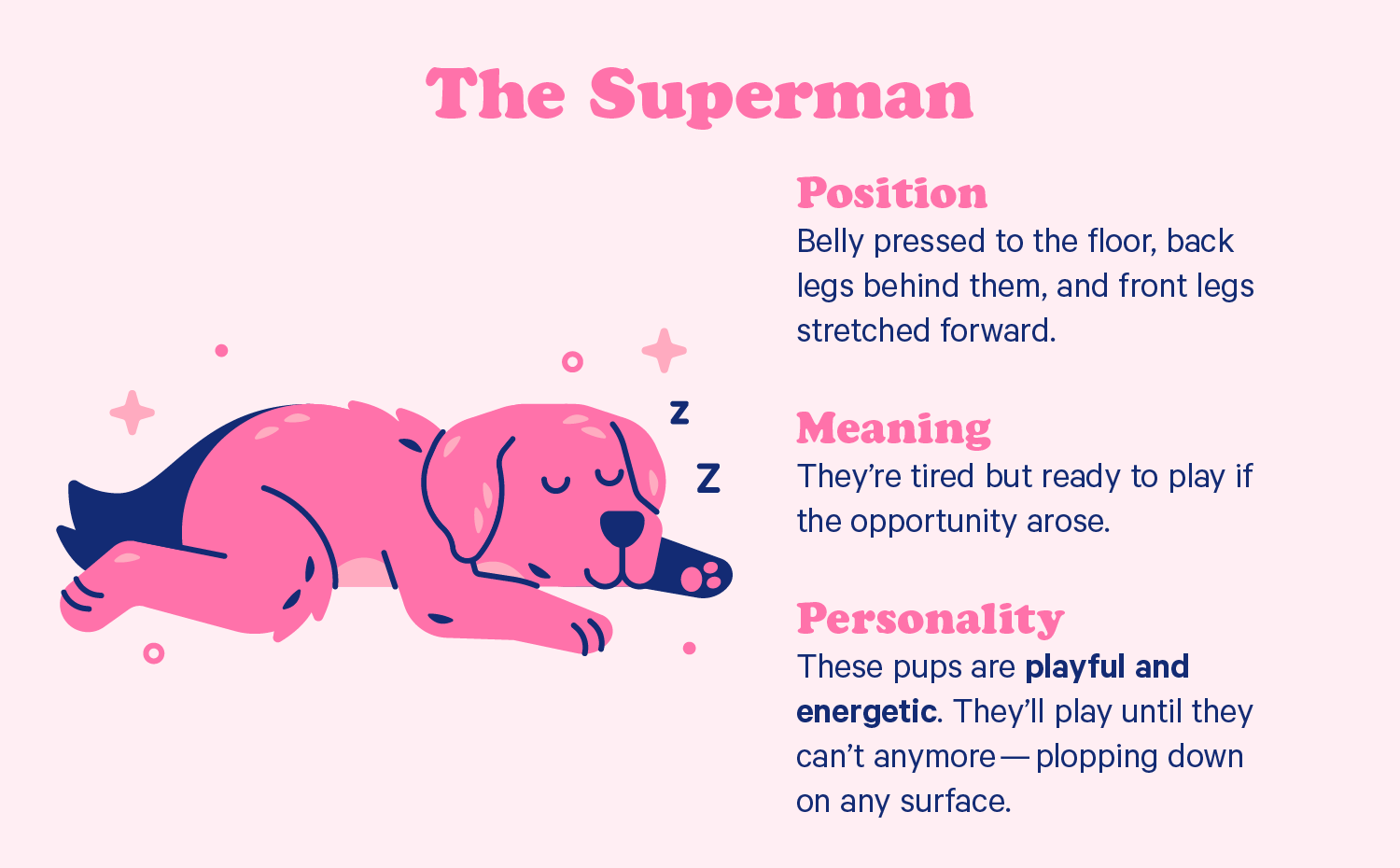 A dog sleeps flat on its stomach with front paws facing forward. Illustration.