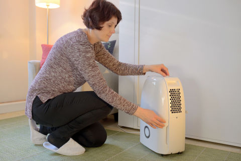 The Best Dehumidifiers