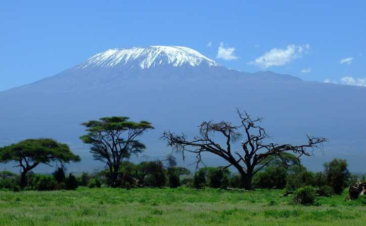 The view of Mt Kilimanjaro from Amboseli National Park.