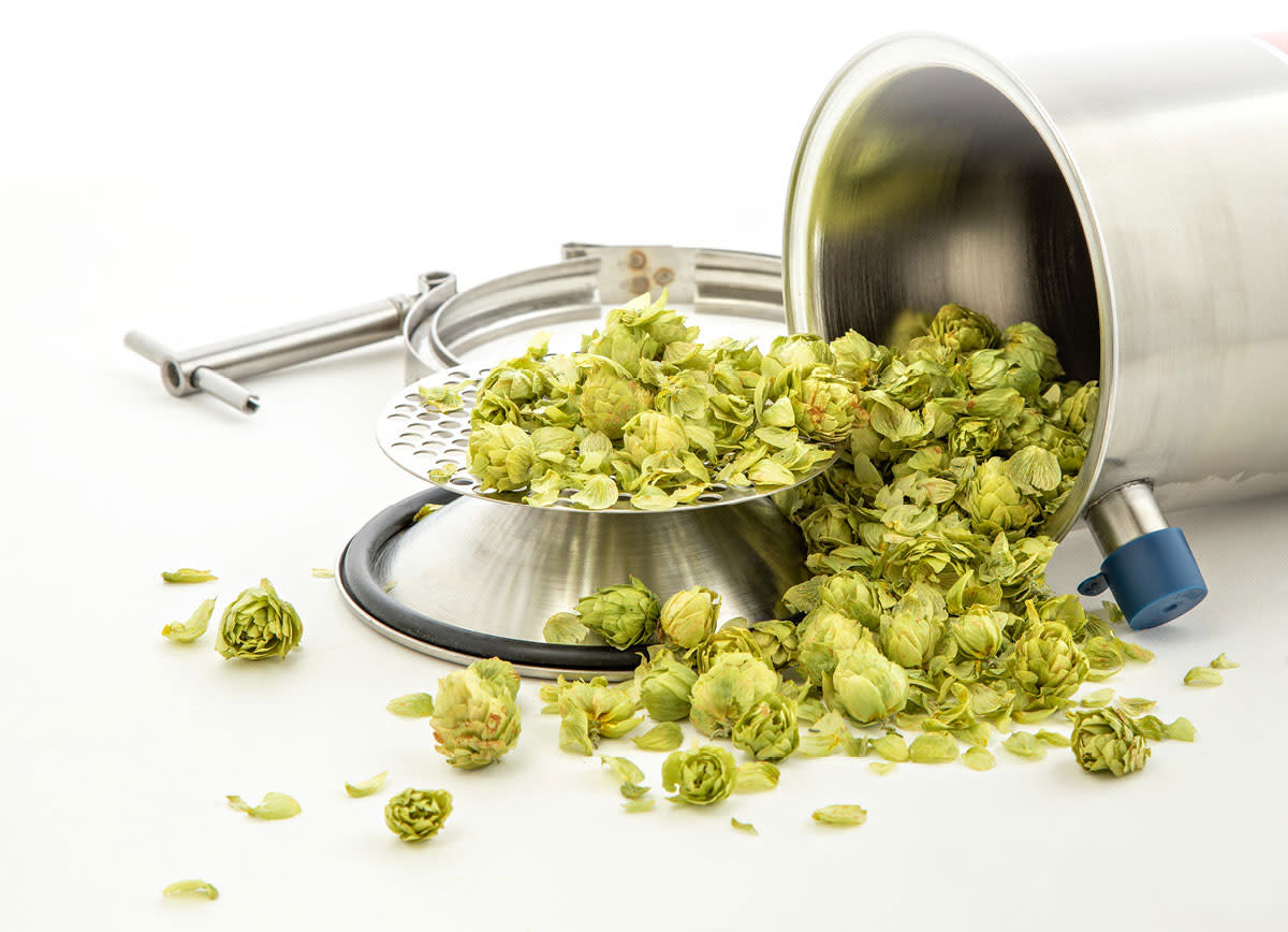 Learning-Lab-More-Ways-to-Get-Hoppy-2