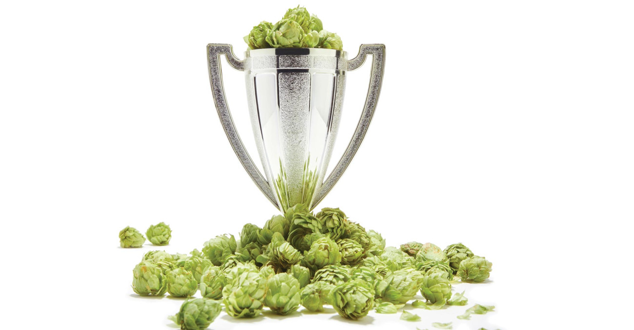 Craft Beer & Brewing Magazine Best in Beer 2016: Critics' Choice Primary Image