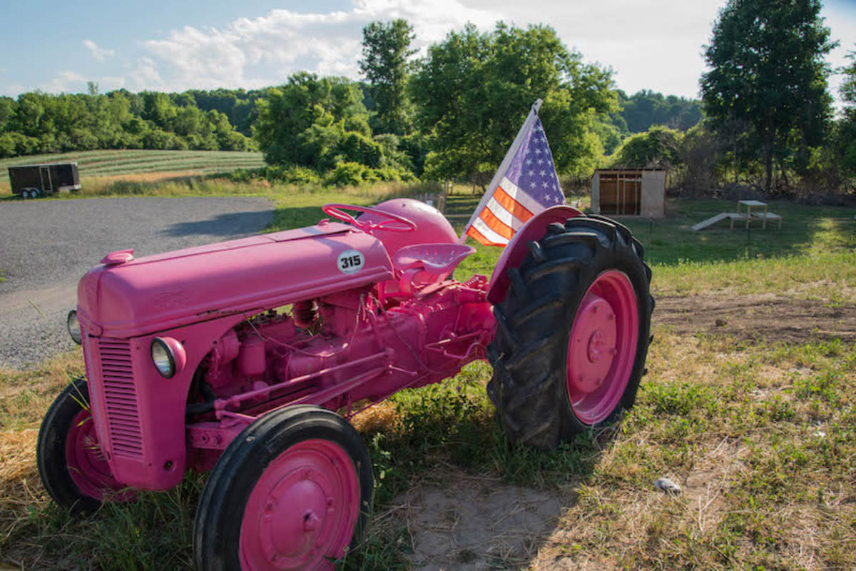 Local 315's pink tractor