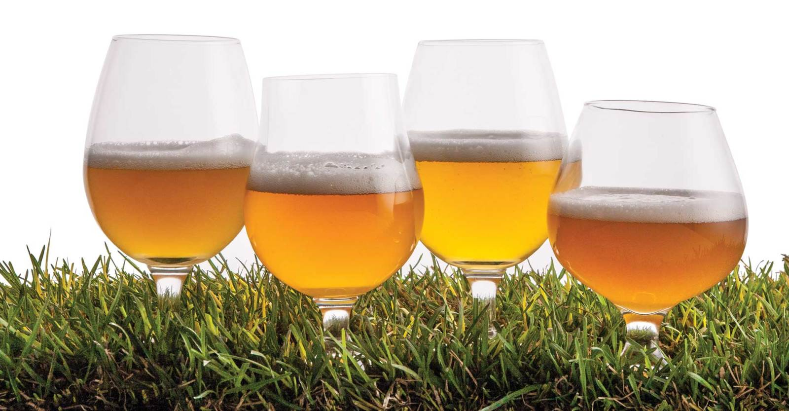 The Classic Saison Recipe | Craft Beer & Brewing