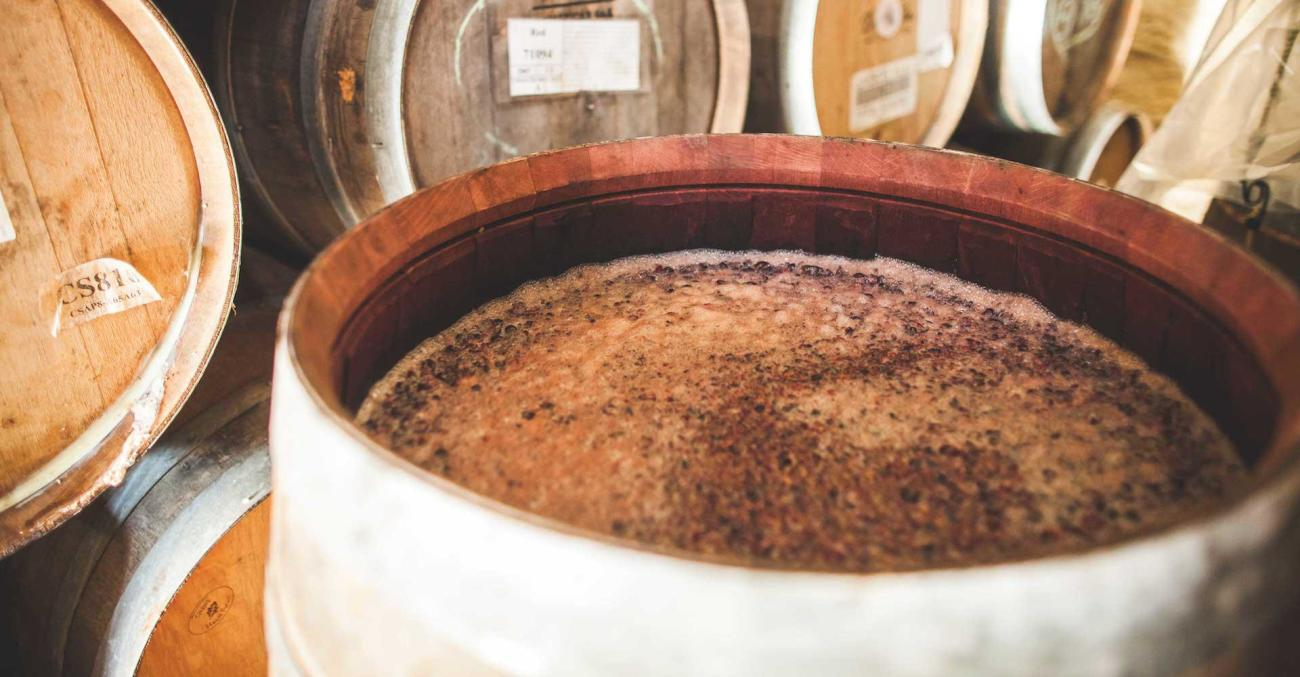 Breakout Brewer: Jester King Brewery Primary Image