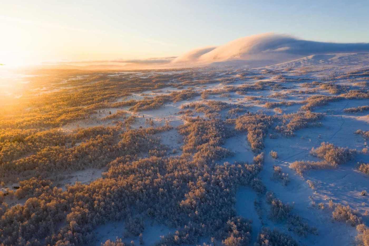 Vinterlandskap med solnedgång
