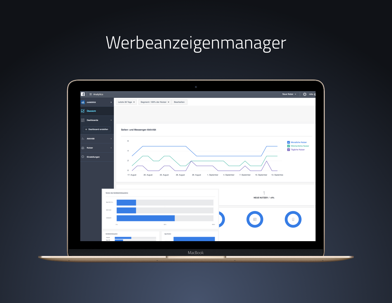 Social-Media-Marketing-B2B-Werbeanzeigenmanager