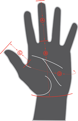 Glove Size Graphic
